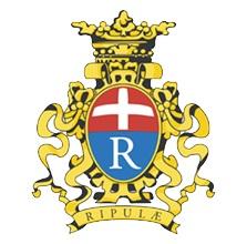 Consiglio Comunale @ Sala Consiliare | Rivoli | Piemonte | Italia